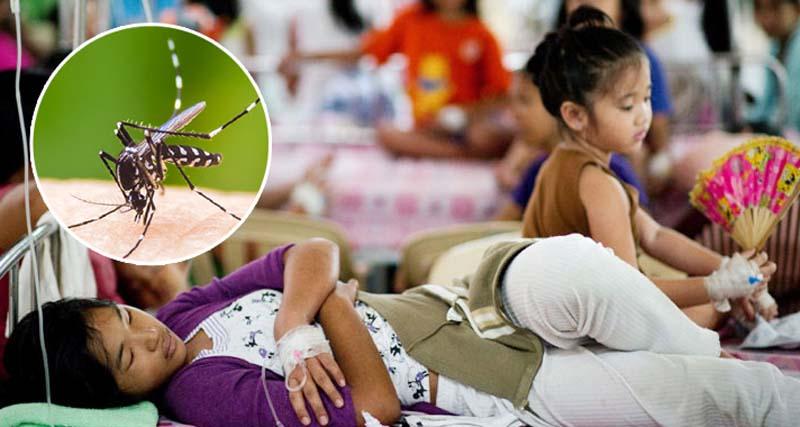 ফিলিপাইনে ডেঙ্গুকে 'জাতীয় মহামারি' ঘোষণা, ৬২২ জনের মৃত্যু